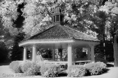 Caryn's Gazebo (large view)