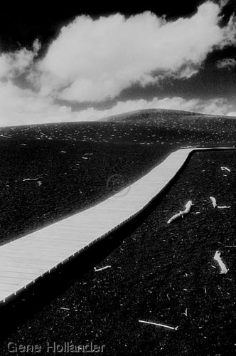 Devastation Trail (large view)
