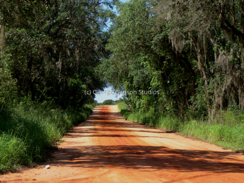 Red Clay Country Road