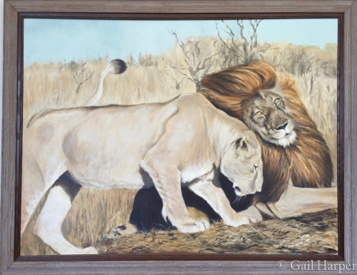Lions by Gail Harper - Art Gallery Sayville, NY