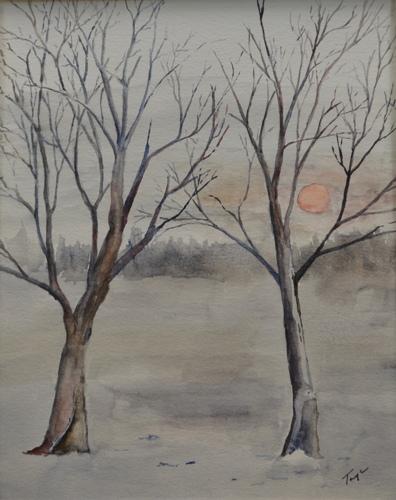 2569-033 Winter Trees