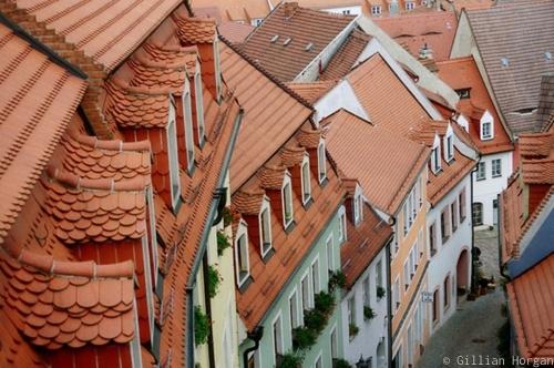 Roofs, Meissen by Gillian Horgan