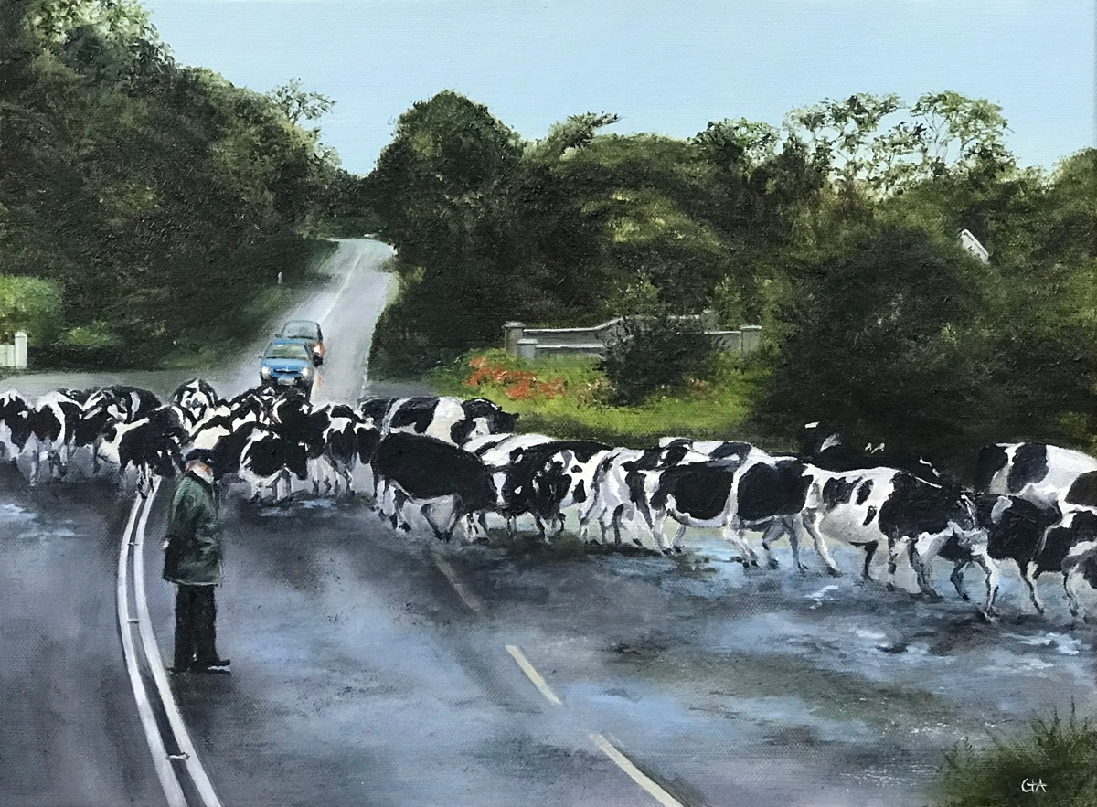 Cow Crossing (large view)