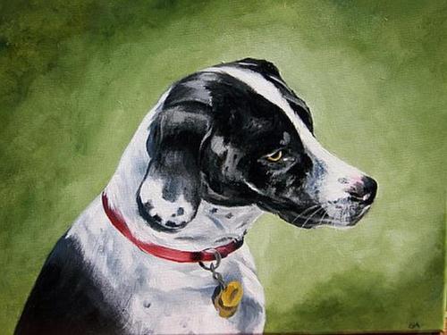 Ro's Dog