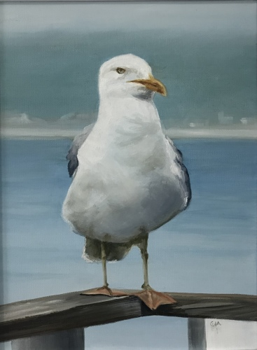 Seagull by GIA