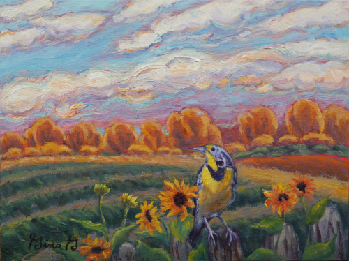 Meadowlark Morning