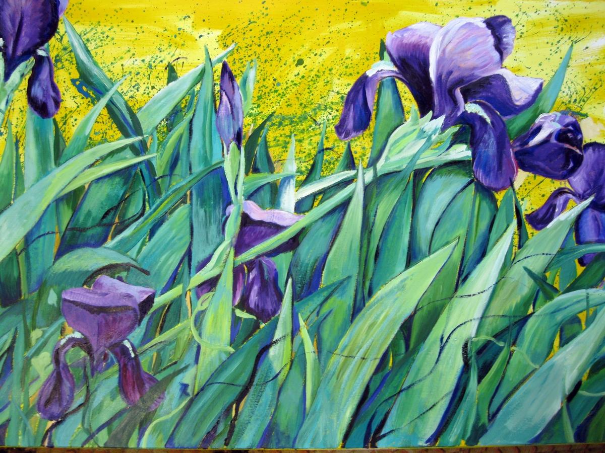 Purple Iris (large view)
