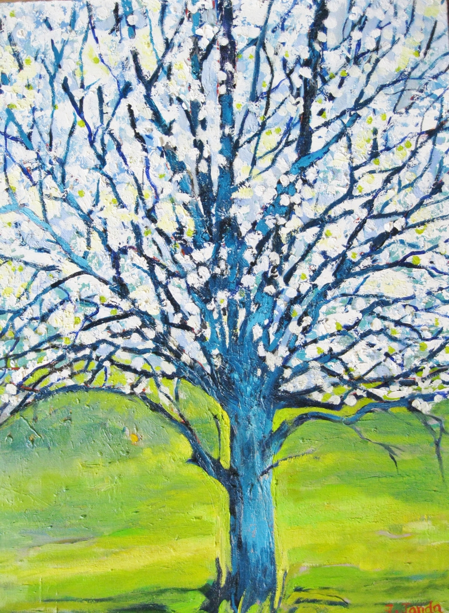 Spring Pear Tree (large view)