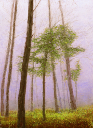Surrounded By Mist by Gloria E. Moses