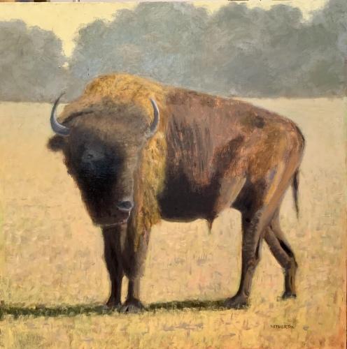 Georgia Bison by George Netherton