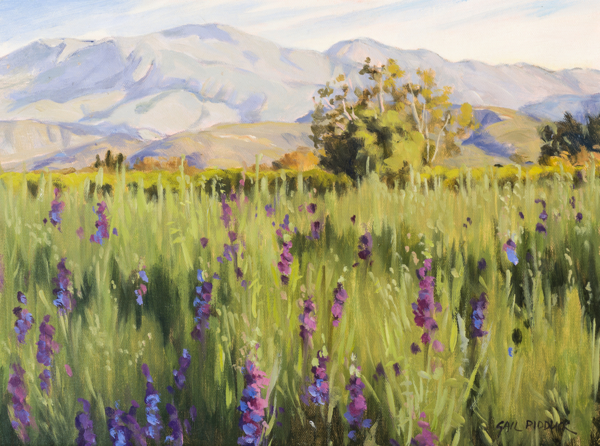 Larkspur (large view)