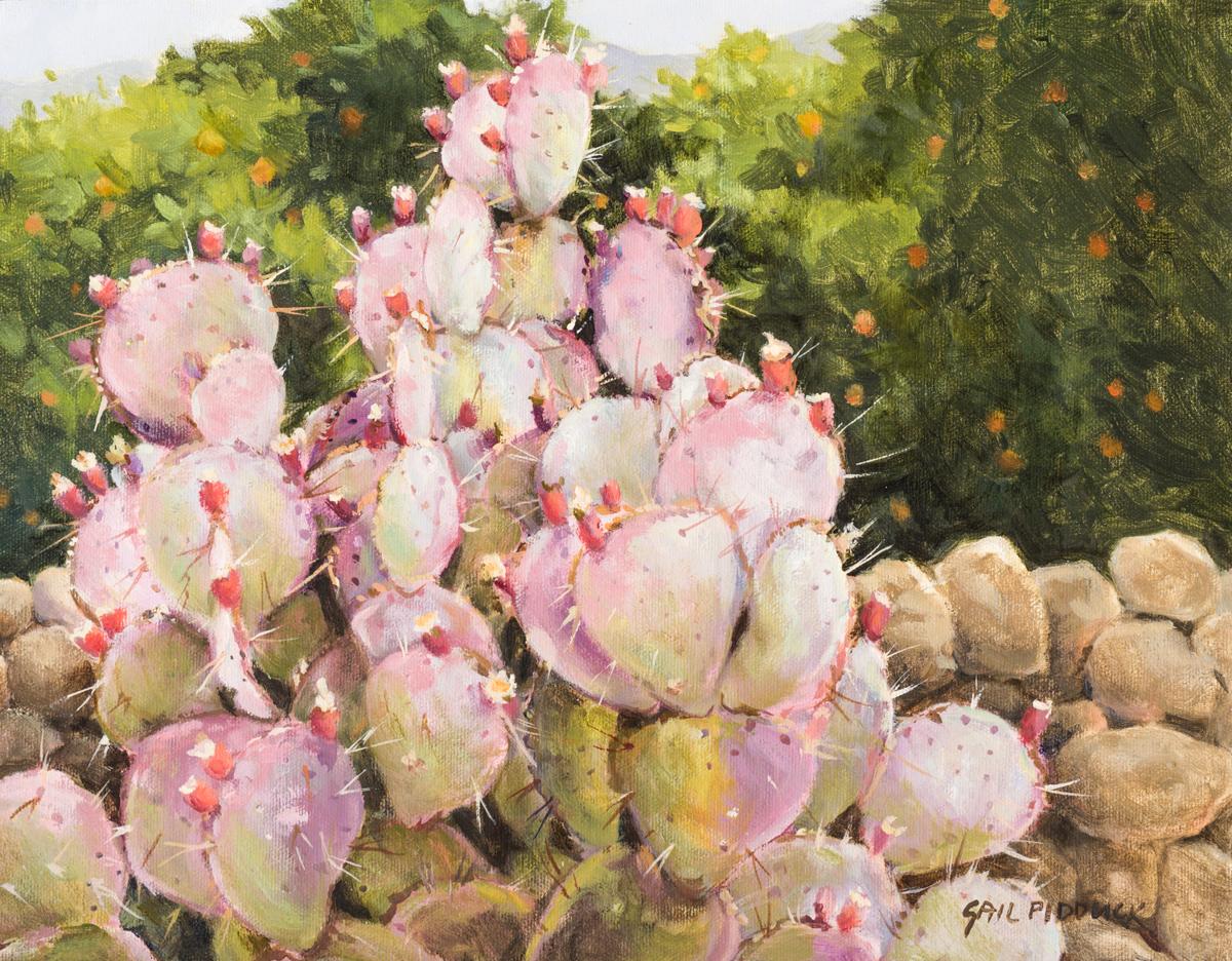 Pink Cacti (large view)