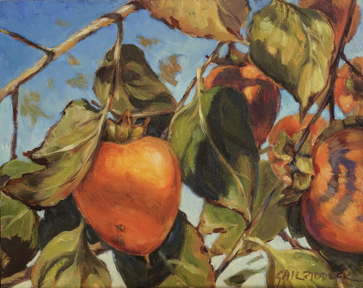 Persimmons (large view)