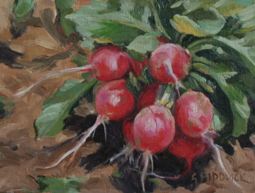 Radishes by Gail Pidduck
