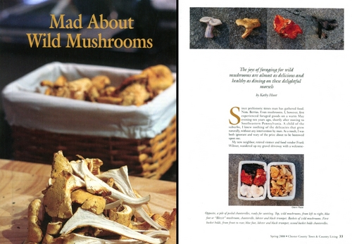 Mad About Wild Mushrooms