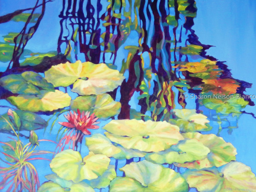 Pond 2 by Sharon Nelson-Bianco
