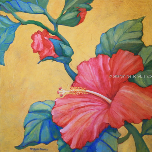 Hibiscus Rhapsody by Sharon Nelson-Bianco