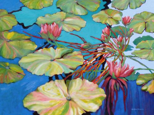 Joy Pond by Sharon Nelson-Bianco
