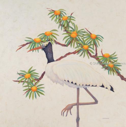 Wandering Wood Stork
