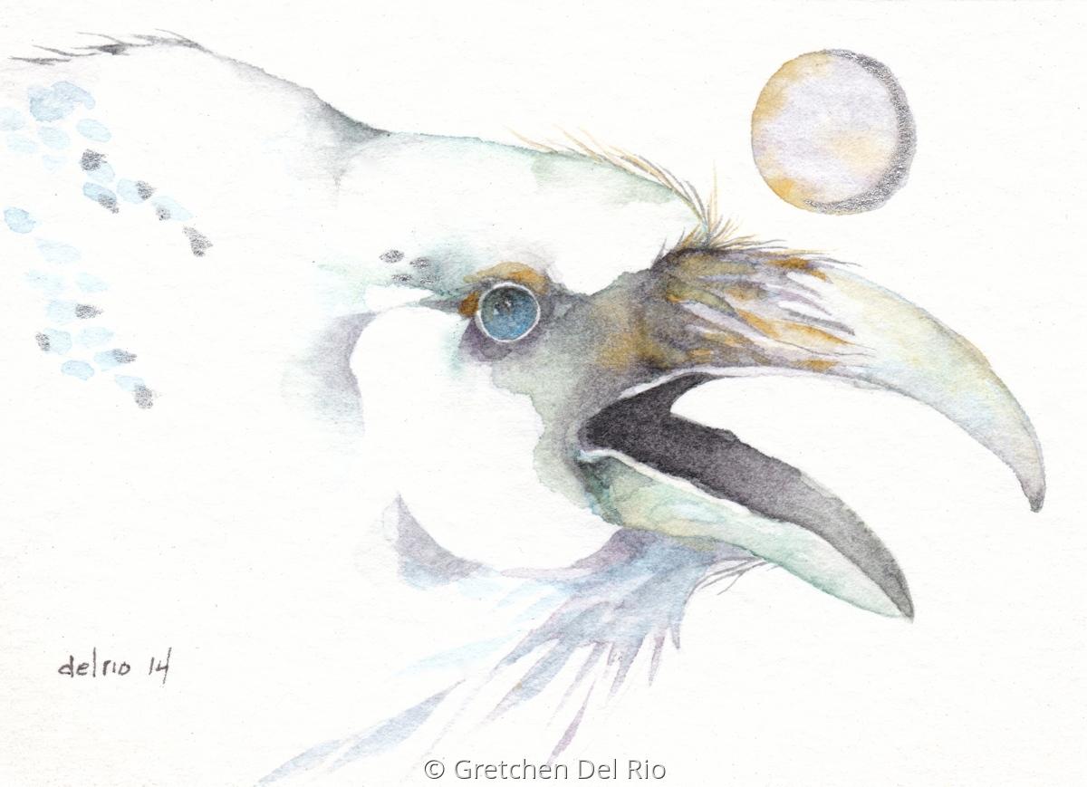 White Raven (large view)