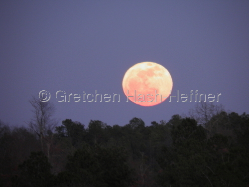 """Moon over Aiken"""