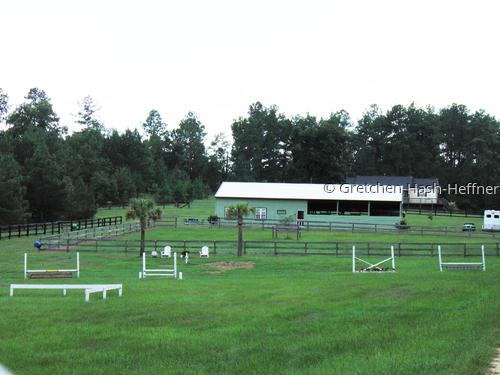riding area on farm