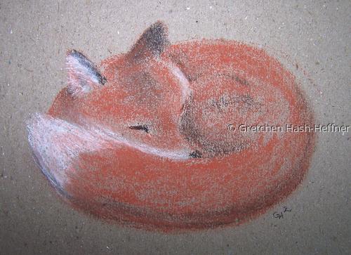 Slumber - Fox 2