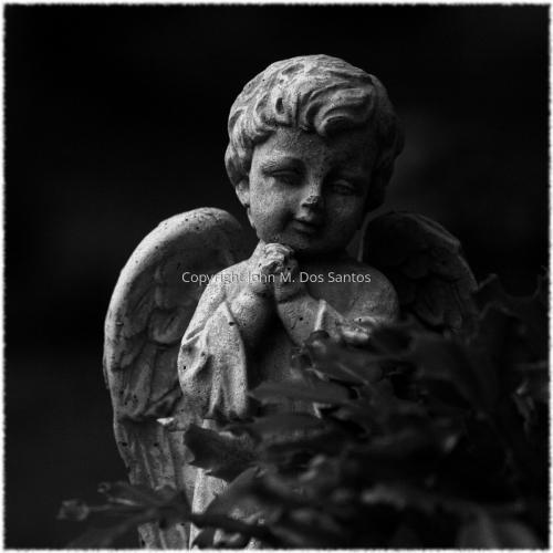 Graveyard 16