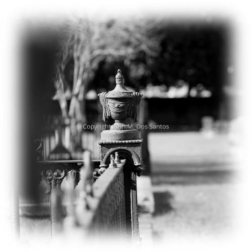Fence Urn