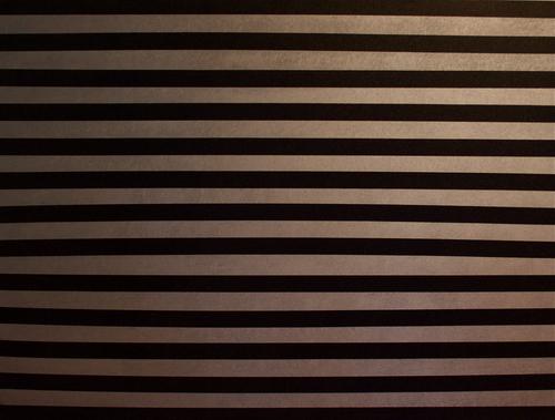 Silver/black stripe (large view)