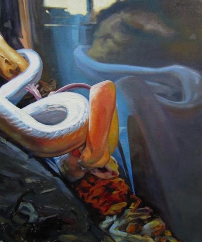 Snake Eats Rat