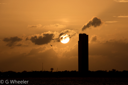 Lone Tower
