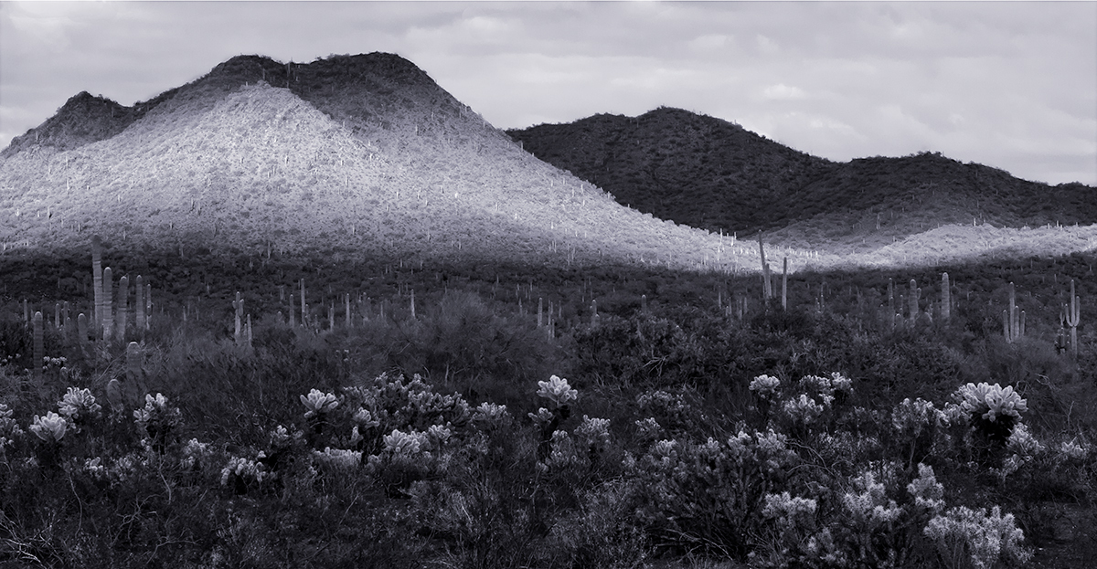 Desert Hills And Shadows - Wickenburg (large view)