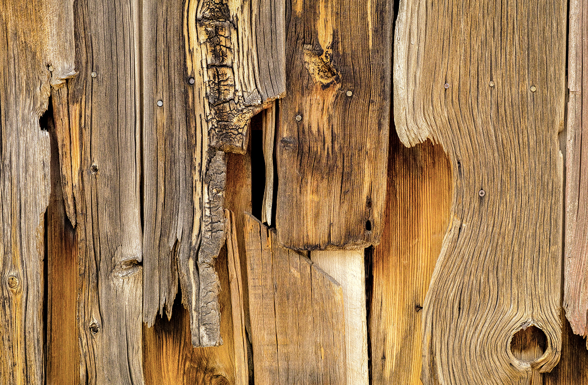 Wood Forms (large view)
