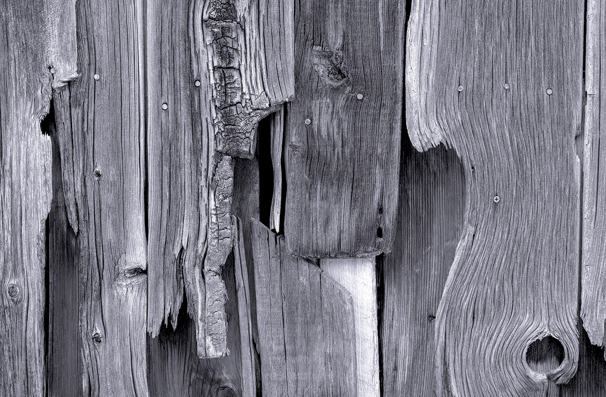 Wood Forms - Black And White (large view)
