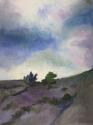 Landscape 5 (thumbnail)