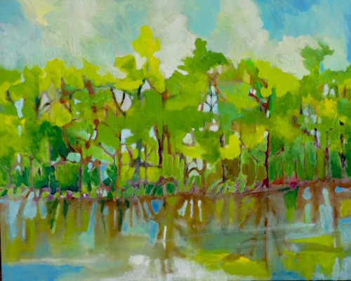 Mangrove Vision