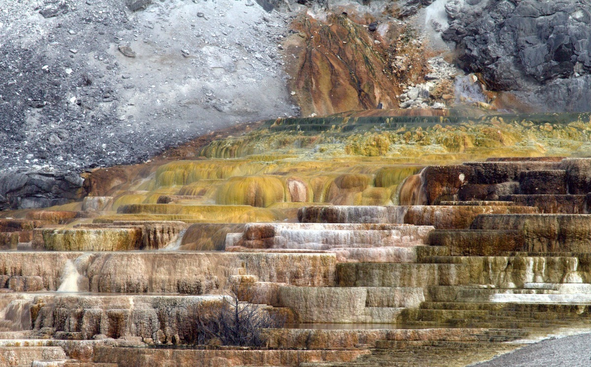 Mammoth spring - Yellowstone (large view)