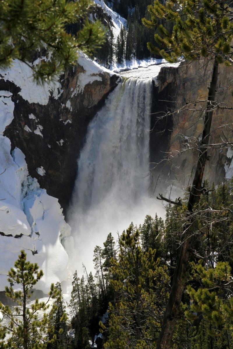 Waterfall - Yellowstone (large view)