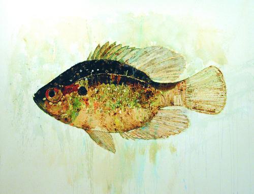 Fish Series #3
