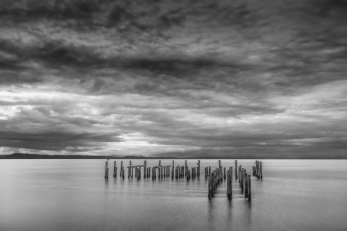 Point Roberts Piles