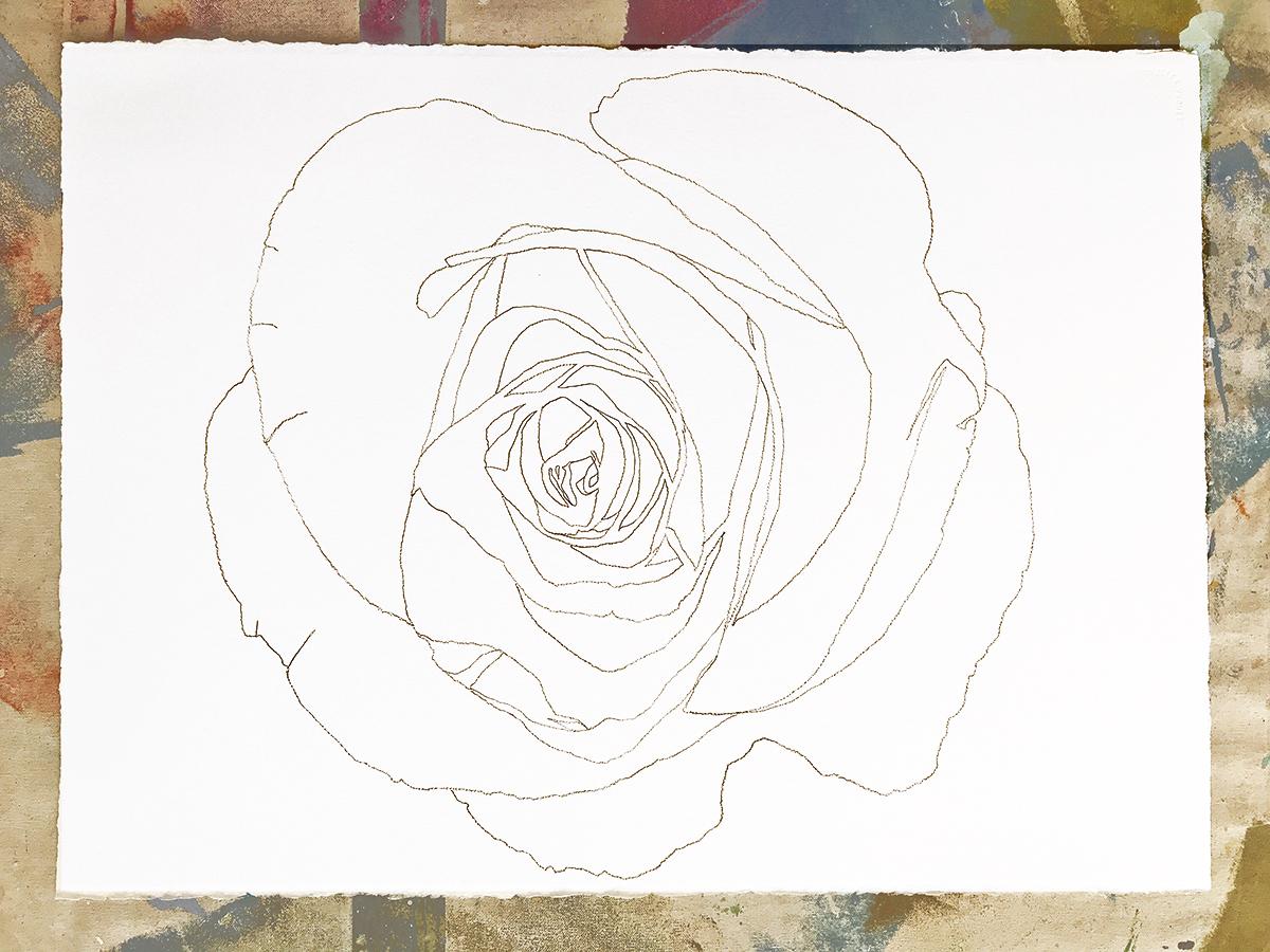 Flower Contour (Rose) I (large view)