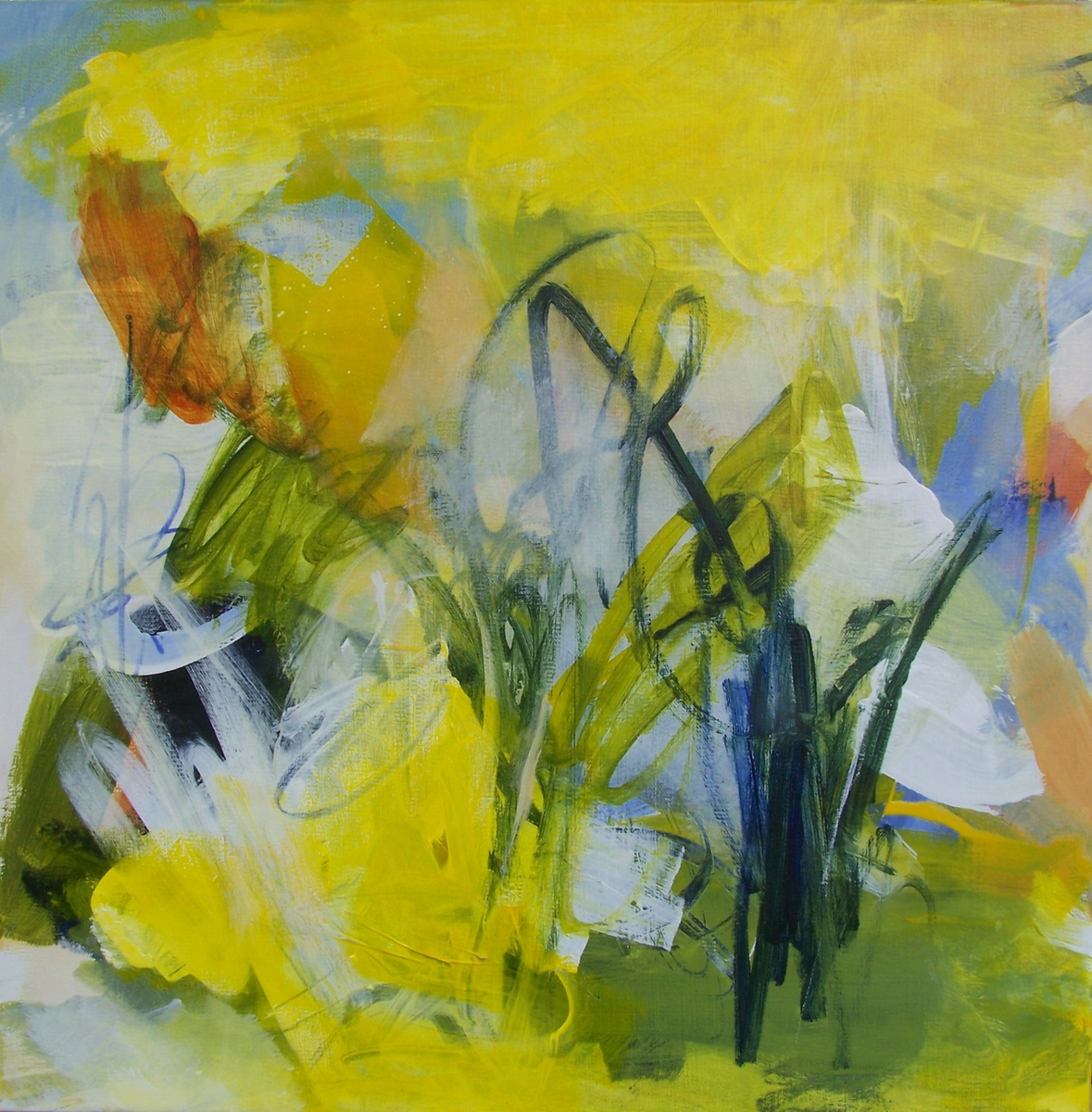 lemon meadow light (large view)