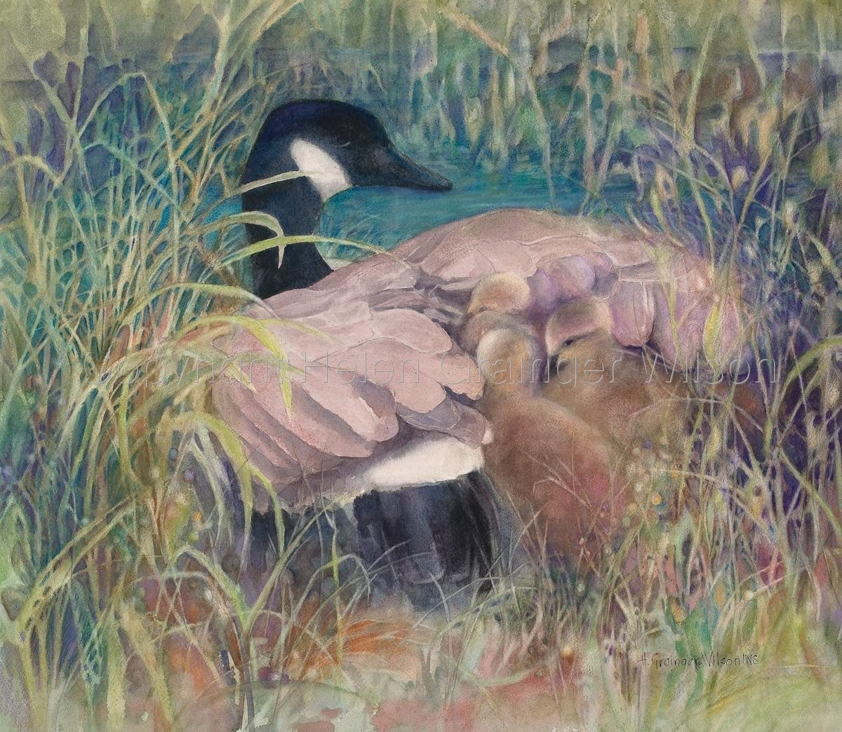 Taking Refuge by Helen Grainger Wilson (large view)