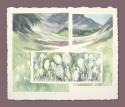 Waterton Beargrass by Helen Grainger Wilson (thumbnail)