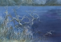Tuckamore Pond, Newfoundland, © Helen Grainger Wilson. All rights reserved. (thumbnail)