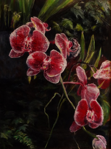Red Orchids by Herb Eilertsen