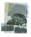 Trees (thumbnail)