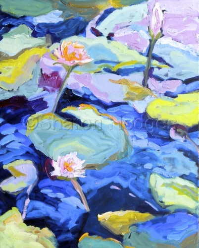 Lily Pads by Sharon Hodges