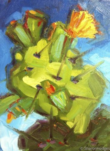 Cactus 1209
